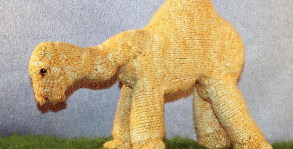 Kareem the Camel