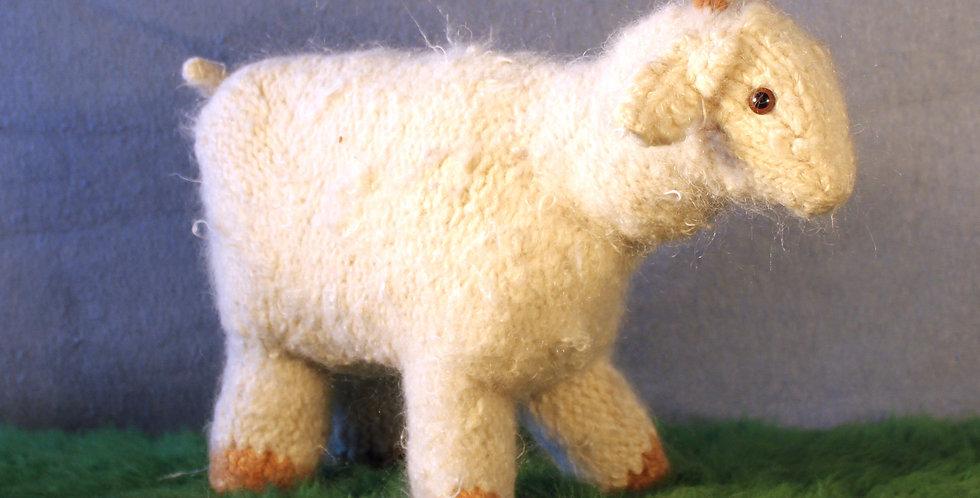 Rose the Angora Goat