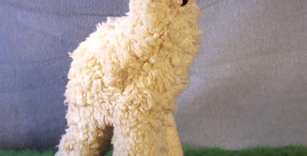 Princepeca the Alpaca
