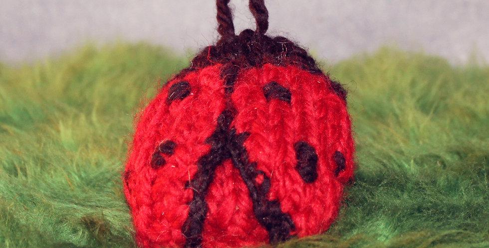 Ladybug Project Protector