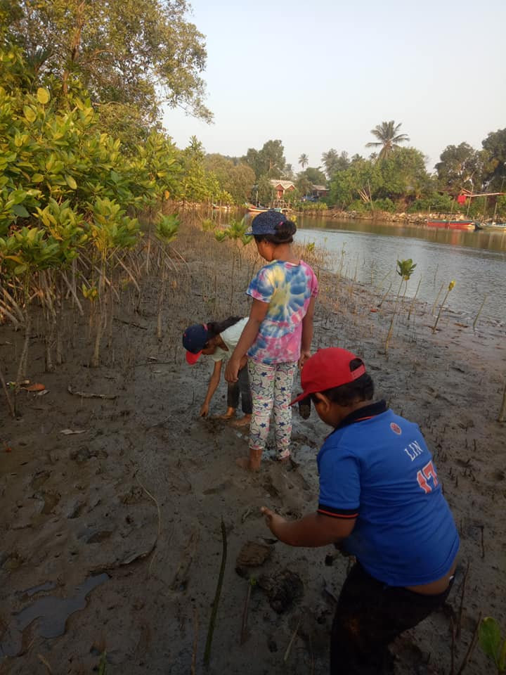 Mangrove Replanting - help our planet