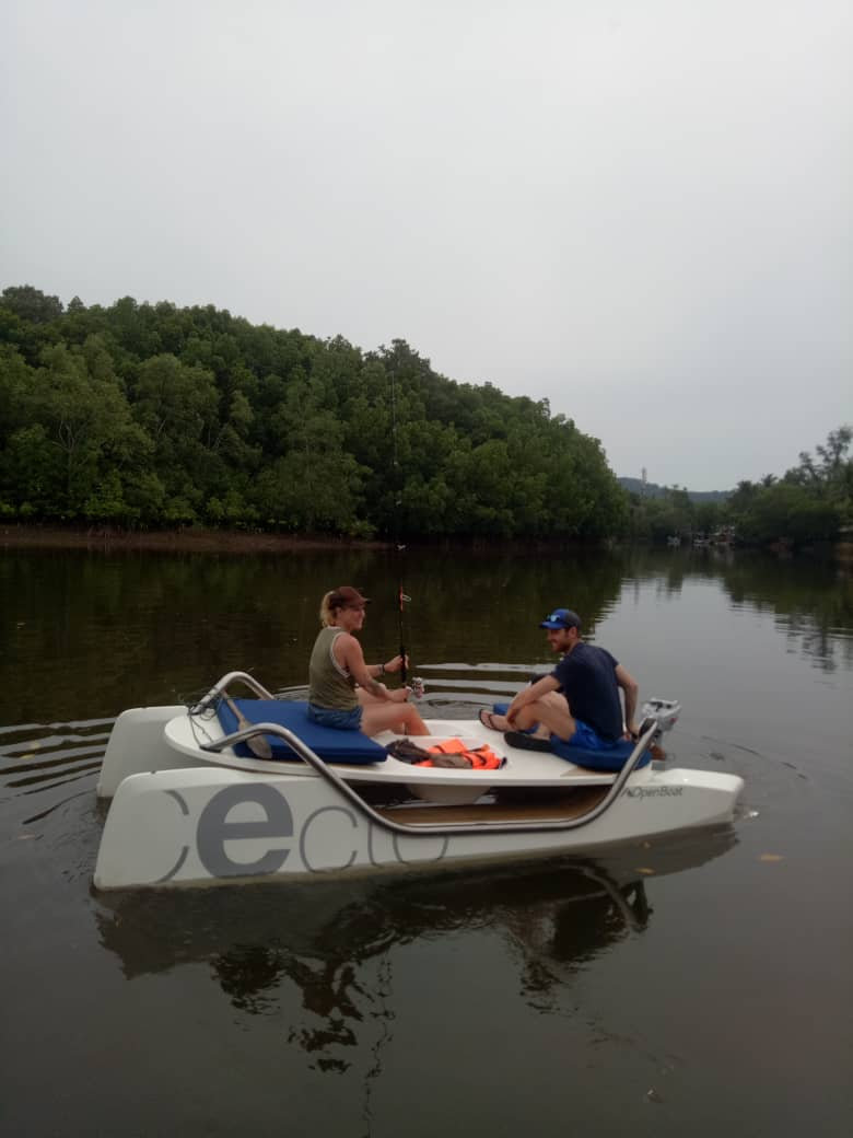 ELECTRIC BOAT TO DISCOVER THE MANGROVE