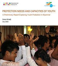 NVP Protection.jpg