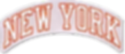 NEW-YORK-chenille HF-331-sm.png