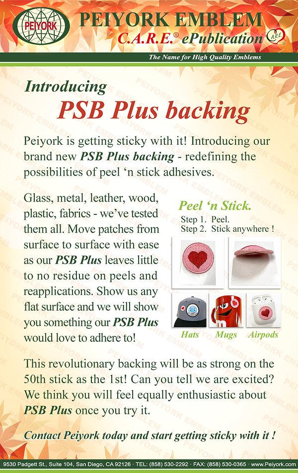 11a ePublication - PSB Plus (2020-11-06)
