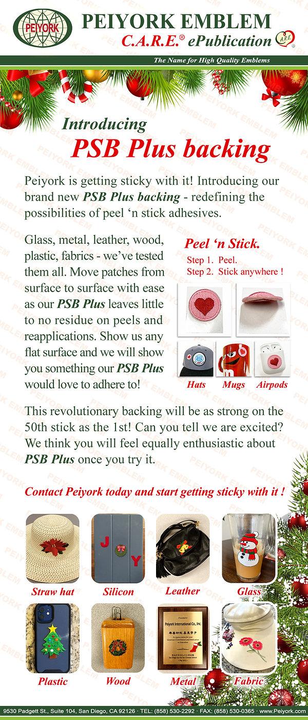 12a ePublication - PSB Plus (2020-12-14)
