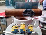 DAVTIAN Cigars