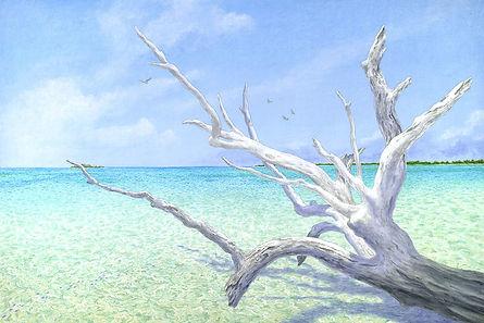 Faraway Cay.JPG