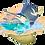 Thumbnail: Sailfish Fantasea