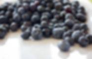 ALFBlueberries-5.jpg