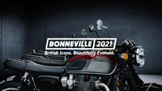 Triumph - Bonneville