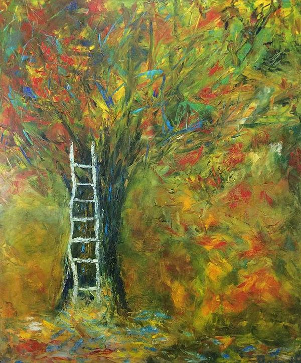 Oak tree ladder.jpg