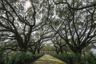 Whitney Plantation, Louisiana - USA