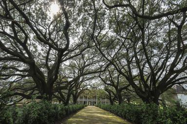 Whitney Plantation, Louisiana - USA