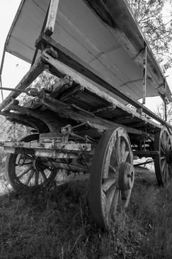 Wagon, Blue Mountain - NSW