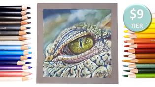 Crocodile Eye in Coloured Pencil