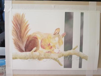 Squirrel Progress Shot 4.jpg