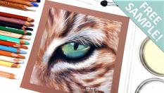 Lynx Eye in Pastels