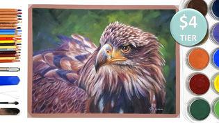 Eagle in Pastels