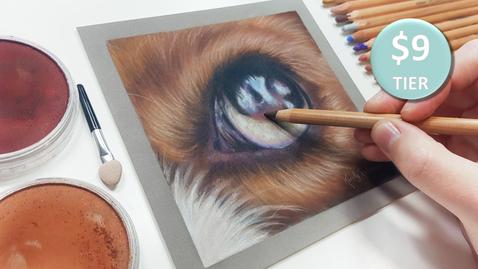 Dog Eye in pastels