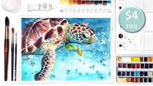 Turtle in Watercolour
