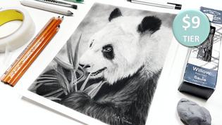Panda in Charcoal