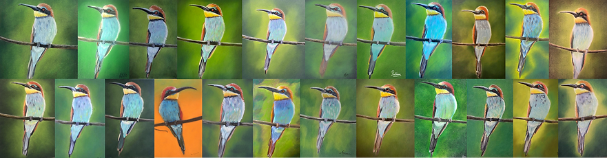 bee eater collage 2.png