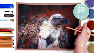 Vulture in Pastels
