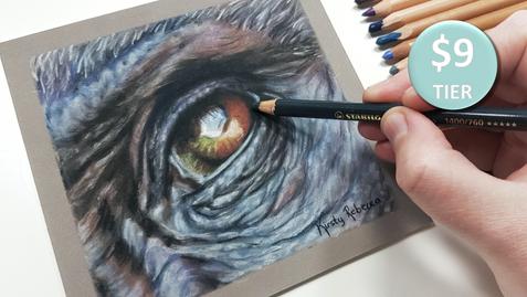 Gorilla Eye in Pastels