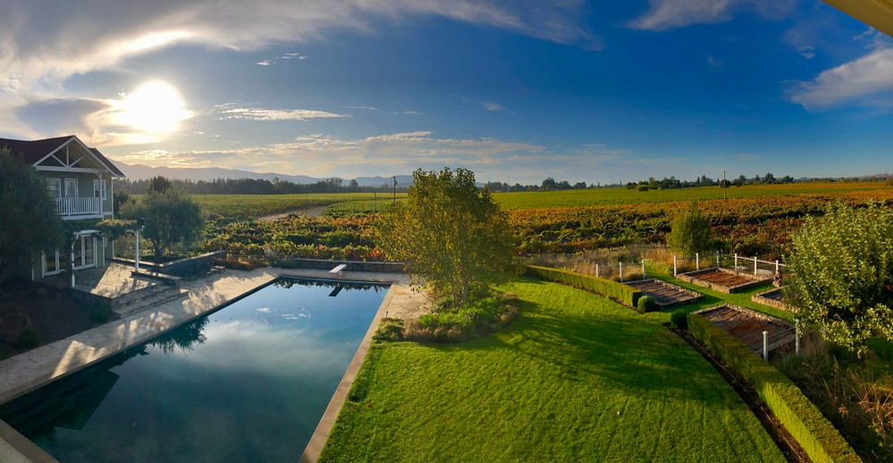 A beautiful view over the vineyards at sunrise