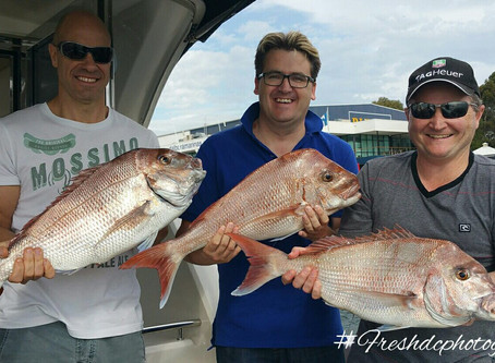 Private Fishing Charter Melbourne Luxury Boat Hire