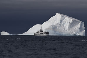 Gayle Force - Whittaker Marine - Captain Scott - Antarctica - Iceberg