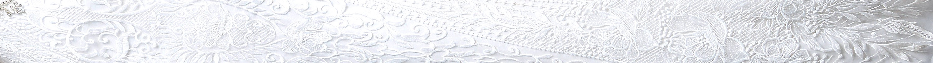 section of dress for header_edited.jpg