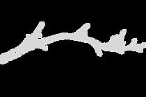 logo T 1080x720.png