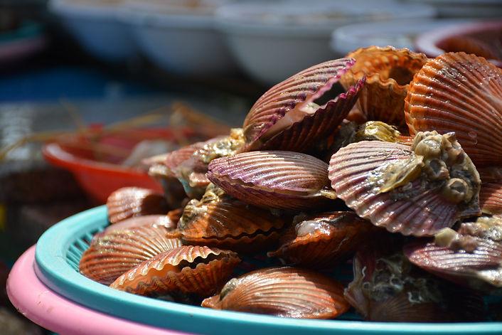 Seafood tray Jagalchi Busan