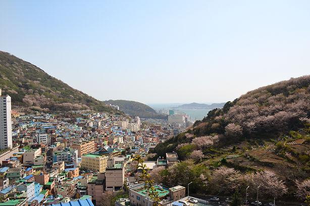 Busan Gamcheon Cultural Village Overvie