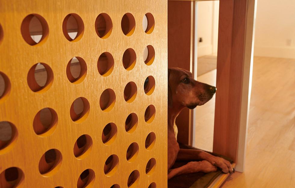 the family dog enjoying ktichen aromas
