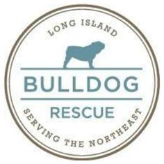 Long Island Bulldog Rescue