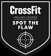 CF_OC_SPOT_FLAW_r1_SML.png