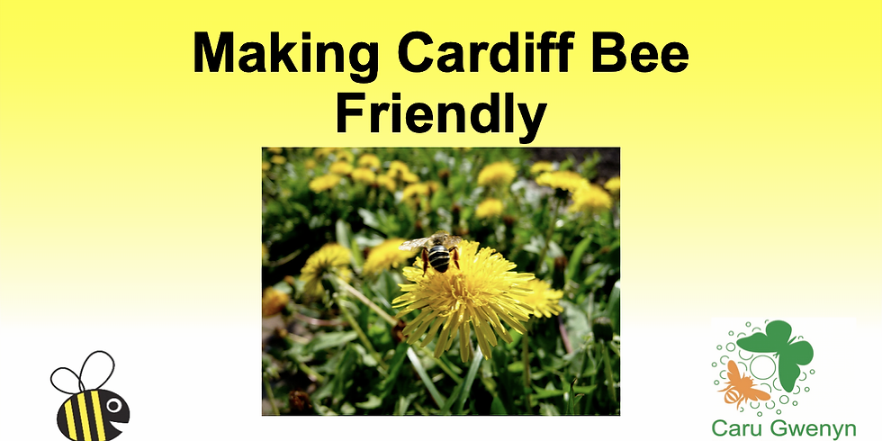 Making Cardiff Bee Friendly