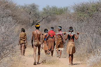 botswana-2219383_960_720.jpg