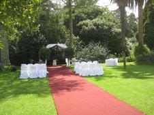9m red carpet - $90