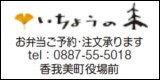 ichonoki.jpg