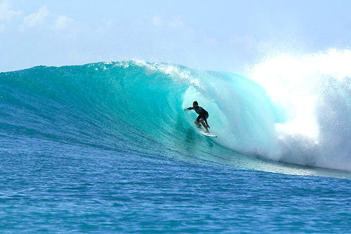 Surf-Athlete Program