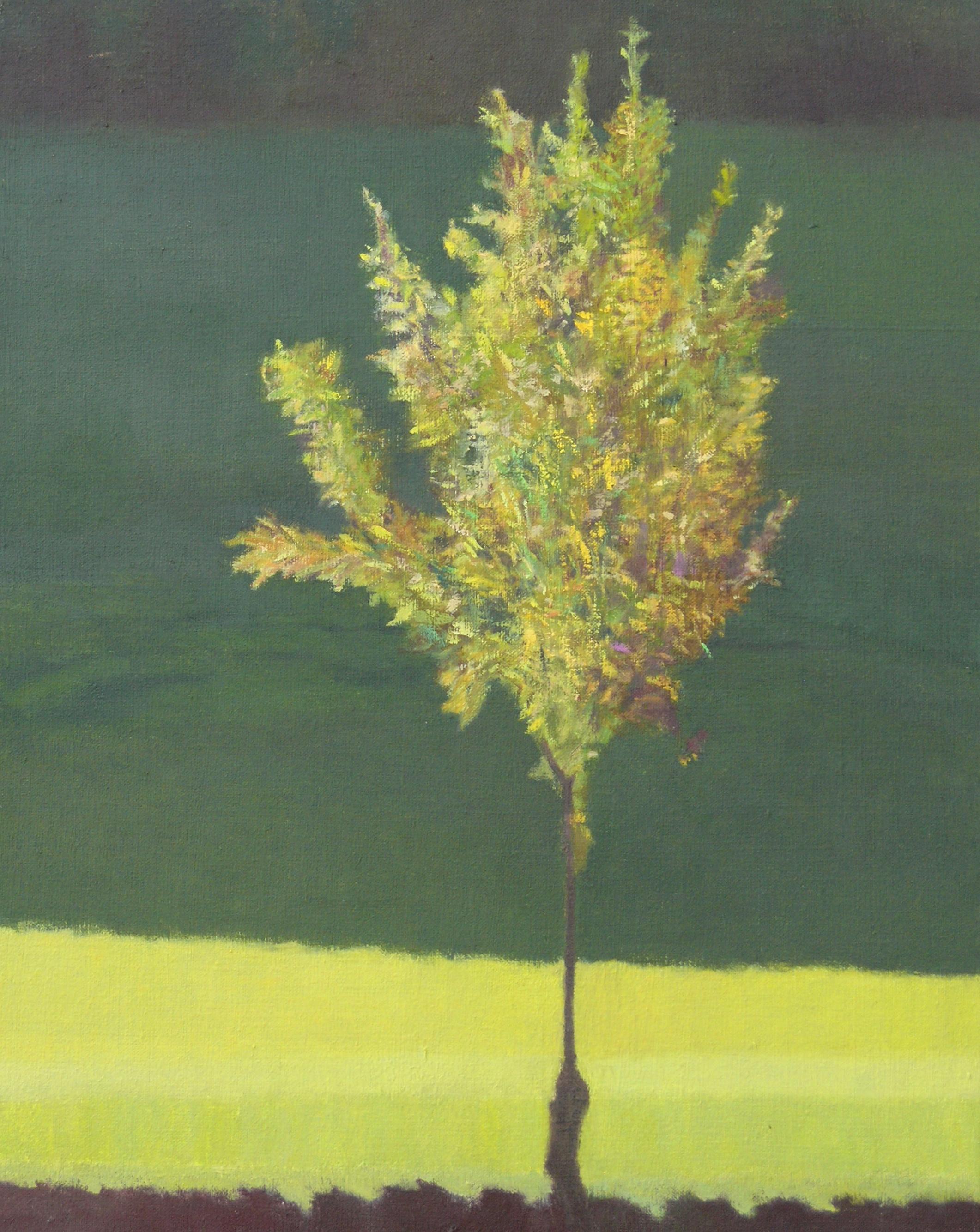Shimmering tree 2