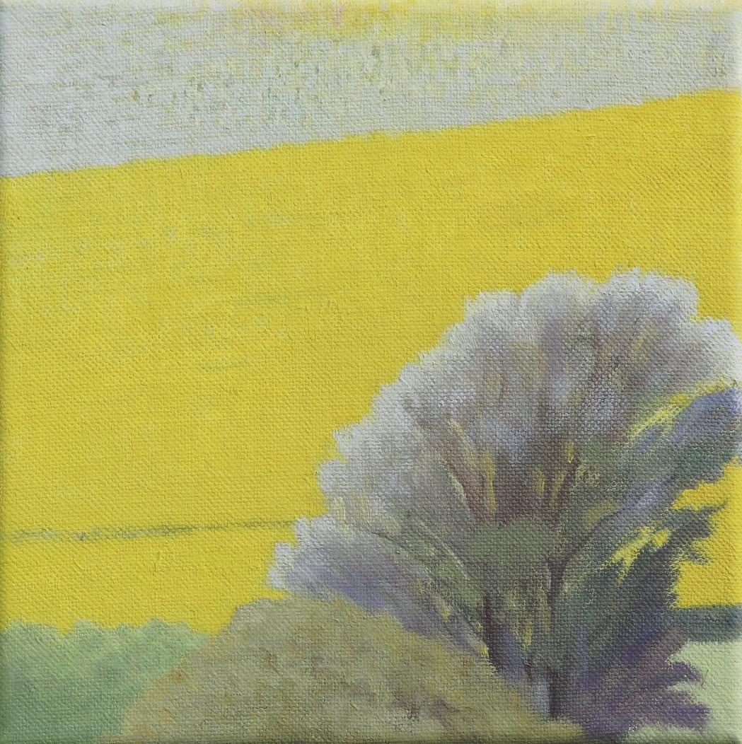 Yellows 2