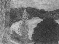 Hay blocks and the big black tree