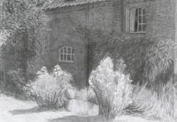 A garden in Norfolk