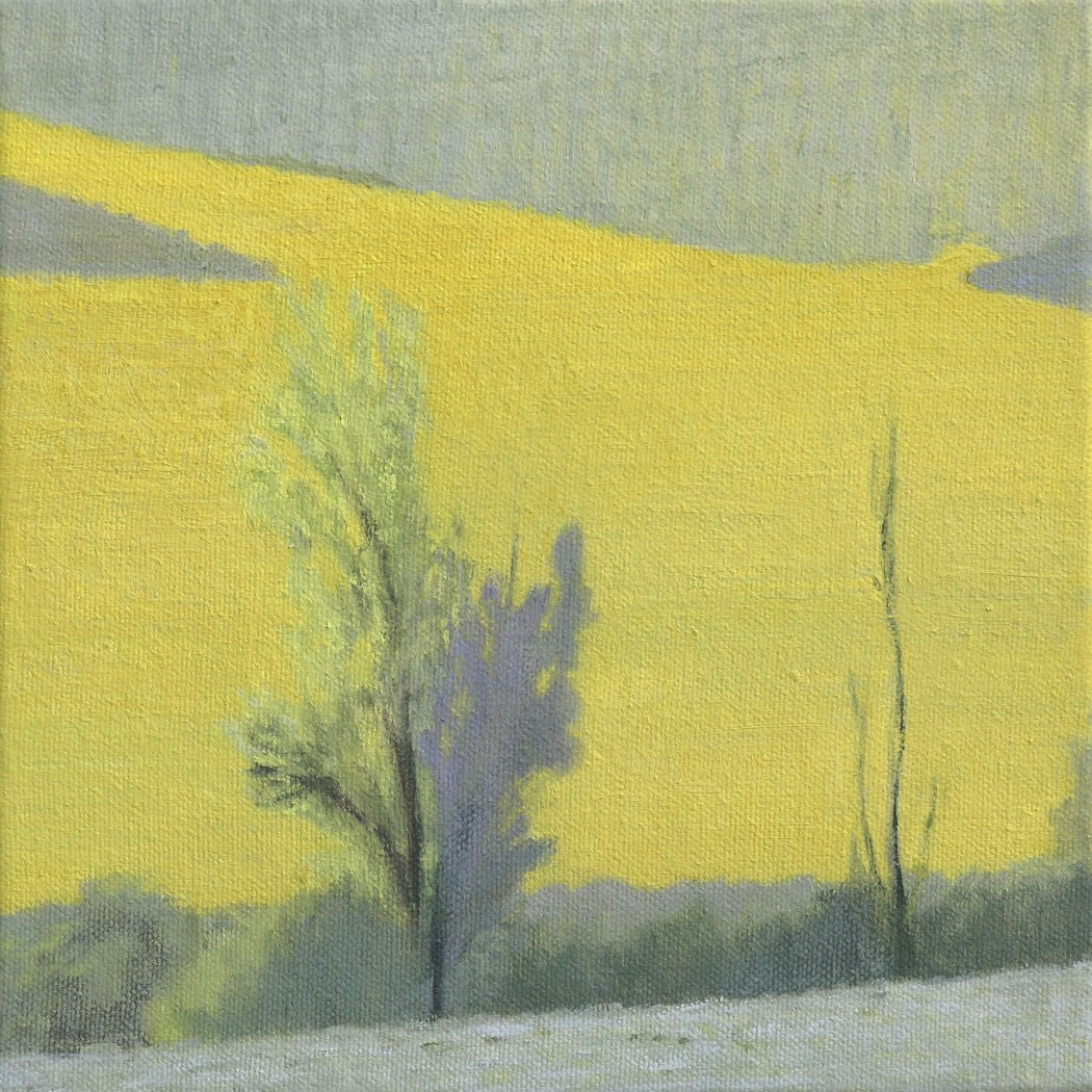 Yellows 3-Private Collection