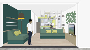 New interiors project: House in New Leiden